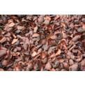 Cocoa Bean Husks
